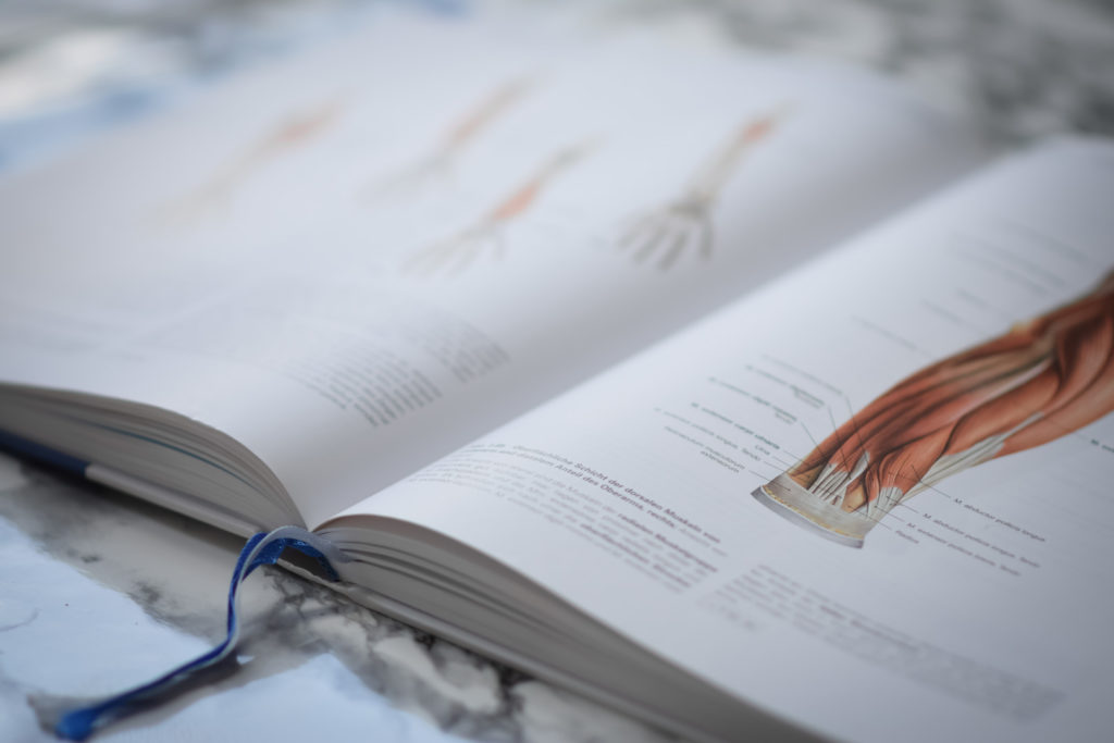 Physiotherapie Ausbildung Österreich